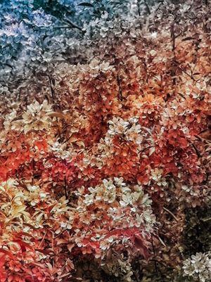 Bloom (#7b5e54) by Trevor Paglen contemporary artwork