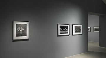 Contemporary art exhibition, Don McCullin, The Stillness of Life at Hauser & Wirth, Somerset