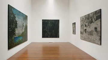 Contemporary art exhibition, Daniel Boyd, Pineapples in the Pacific at Roslyn Oxley9 Gallery, Sydney