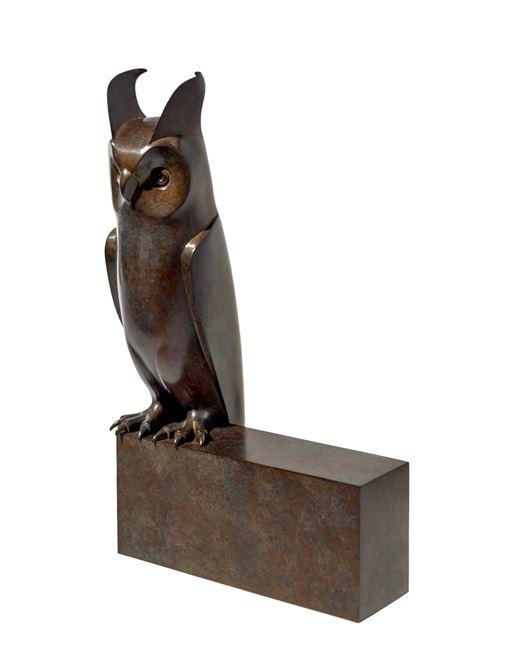 Small Long-eared Owl by Daniel Daviau contemporary artwork