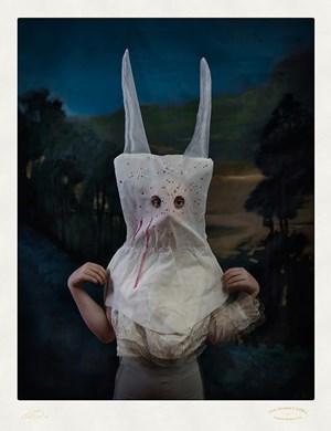 The Donkey Debil by Jacqui Stockdale contemporary artwork