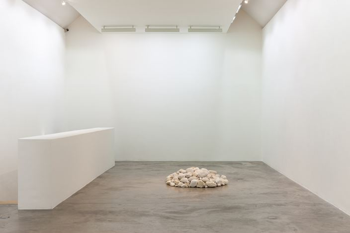 Exhibition view: Dorothy Cross, I dreamt I dwelt, Kerlin Gallery, Dublin (6 September–19 October 2019). Courtesy Kerlin Gallery.