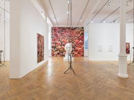"Trevor Paglen<br><em>Bloom</em><br><span class=""oc-gallery"">Pace Gallery</span>"