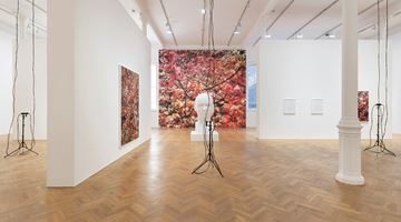 Contemporary art exhibition, Trevor Paglen, Bloom at Pace Gallery, London
