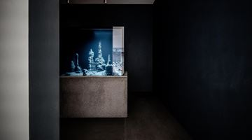 Contemporary art exhibition, Pierre Huyghe, Circadian Dilemna at Winsing Art Place, Taipei