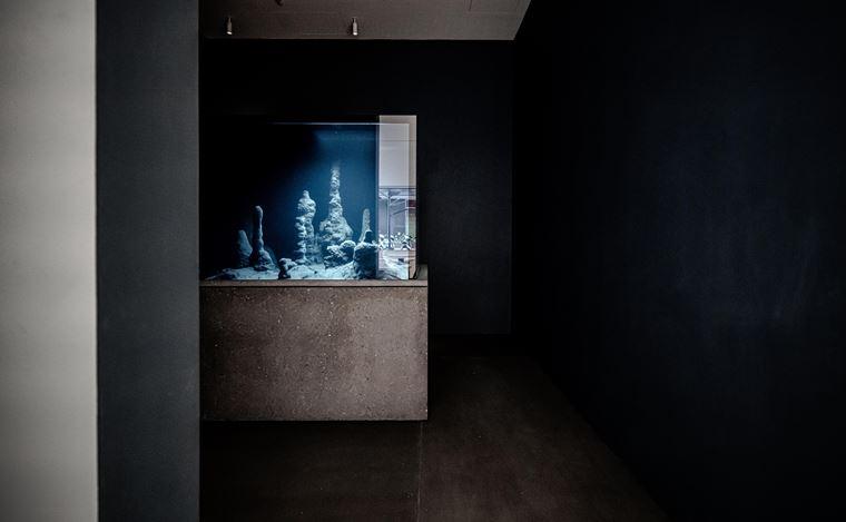 Pierre Huyghe, Circadian Dilemna (2017).Aquarium, Astyanax Mexicanus, black switchable glass, geo-localised program. 165 x 138.5 x 124 cm. Courtesy Winsing Art Place, Taipei.