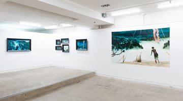 Contemporary art exhibition, John Walsh, Uawa Tolaga Bay at Page Galleries, Wellington