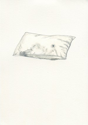 Eye Pillow by Zina Swanson contemporary artwork