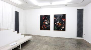 Contemporary art exhibition, Luzia Simons, Stockage and Jardim at Galerija Fotografija, Ljubljana, Slovenia