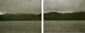 Cook's Sites 12 . 12 . 1995. View into Meretoto/Ship Cove and Cannibal Cove from Motuara Island by Mark Adams contemporary artwork
