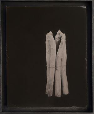 Spargel by Steffen Diemer contemporary artwork