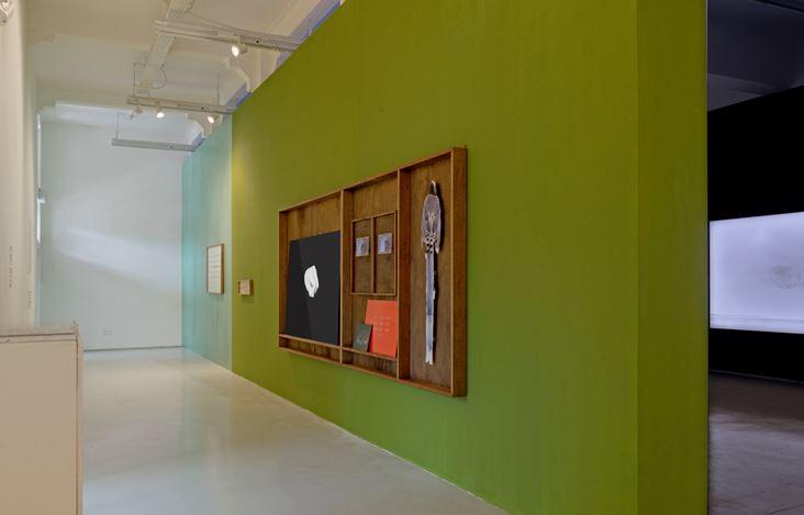 Exhibition view:Robert Zhao Renhui, The Lines We Draw, ShanghART, Singapore (15 January–30 August 2020). CourtesyShanghART.