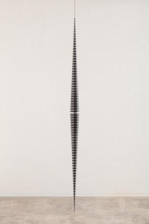 Itze by Artur Lescher contemporary artwork