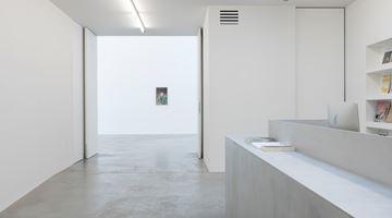 Contemporary art exhibition, Pietro Roccasalva, The Argon Welder at Zeno X Gallery, Antwerp, Belgium