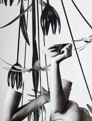 Tulipan by Miriam Tölke contemporary artwork
