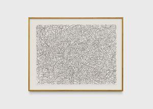 Desenho sustentado por bengalas observado por peixes by Milton Machado contemporary artwork