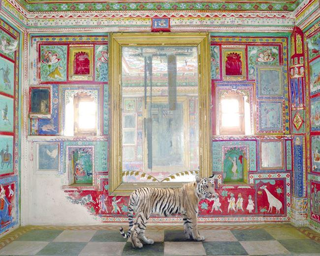 Durga's Mount, Junha Mahal, Dungarpur by Karen Knorr contemporary artwork