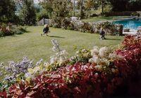 Private Garden, Kent by Peter Bialobrzeski contemporary artwork photography