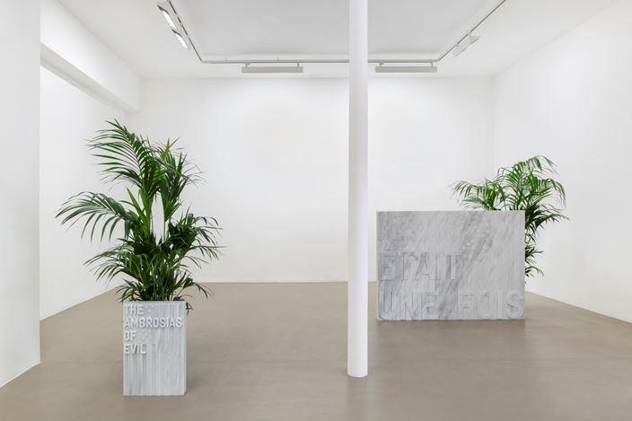 Exhibition view: Rirkrit Tiravanija, untitled 2020 (once upon a time) (after jasper johns), Galerie Chantal Crousel, Paris, France (5 September–10 October 2020). Courtesy the artist and Galerie Chantal Crousel,Paris. Photo: Martin Argyroglo.
