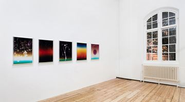 Contemporary art exhibition, Anne Hardy, Rising Heat at Maureen Paley, Online Only, London