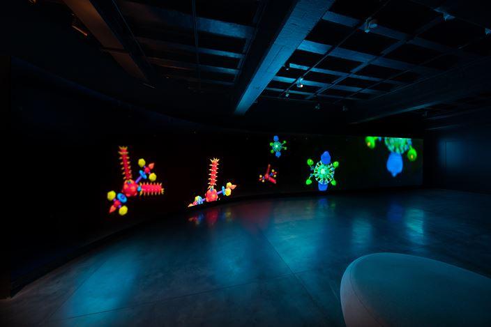 Tabor Robak, Butterfly Room: Special Edition (2014–2021). Digital video, 45 min. Courtesy Hyundai Motorstudio Beijing.