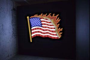 Flag by Takeshi Murata contemporary artwork
