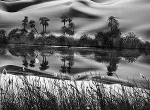 The Erg Ubari, a vast expanse of sand dunes, has no fresh water, but salt lakes, Libya by Sebastião Salgado contemporary artwork