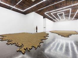 "Yang Xinguang<br><em>Bad Soil</em><br><span class=""oc-gallery"">Beijing Commune</span>"