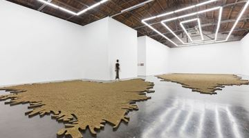 Contemporary art exhibition, Yang Xinguang, Bad Soil at Beijing Commune, Beijing