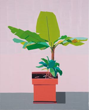Gilboa Plant by Guy Yanai contemporary artwork
