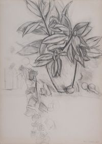 Nature morte au lierre by Henri Matisse contemporary artwork painting, works on paper, drawing
