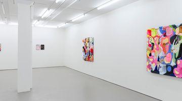 Contemporary art exhibition, Miranda Parkes, zoomer at Bartley & Company Art, Wellington