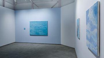 Contemporary art exhibition, Ayesha Sultana, Bare Bones at Experimenter, Ballygunge Place, Kolkata