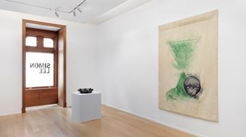 Contemporary art exhibition, Mai-Thu Perret, Flowers in the Eye at Simon Lee Gallery, New York