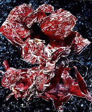 Amaryllis rouge 4 by Philippe Cognée contemporary artwork