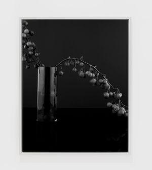 Love Apples (I) by Sarah Jones contemporary artwork photography
