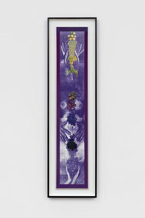 Grapevine by Penny Slinger contemporary artwork