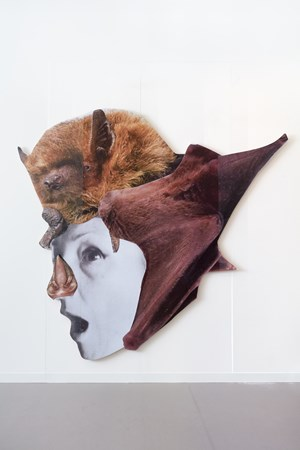 Crazy Bat Lady 4 by Monster Chetwynd contemporary artwork