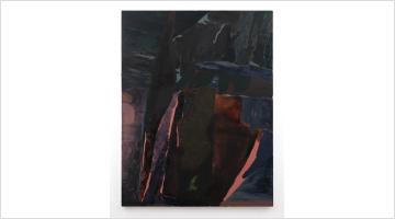 Contemporary art exhibition, Biraaj Dodiya, Stone is a Forehead at Experimenter, Kolkata