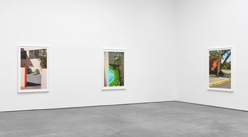 Contemporary art exhibition, William Eggleston, Selected Works from The Democratic Forest at David Zwirner, 20th Street, New York
