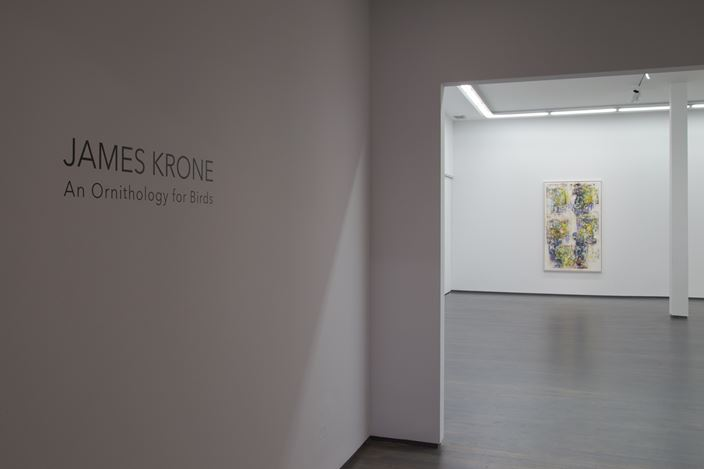 Exhibition view: James Krone, An Ornithology for Birds, Kavi Gupta, Washington Blvd, Chicago (6 November 2015–20 February 2016). Courtesy Kavi Gupta.