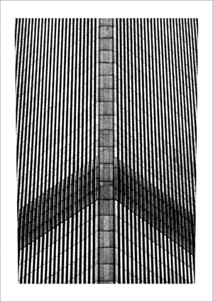 Fly agaric n.11 by Fernando Zaccaria contemporary artwork