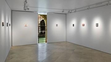 Contemporary art exhibition, Secundino Hernández, Grapado a la piel at Victoria Miro, Venice