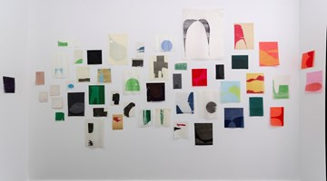 Contemporary art exhibition, Allyson Strafella, field at Bartha Contemporary, Margaret St, London