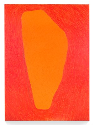 9 Shapes: Two by McArthur Binion contemporary artwork