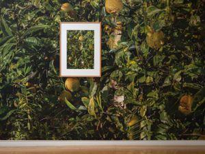 A ruse (v) by Shaun Waugh contemporary artwork