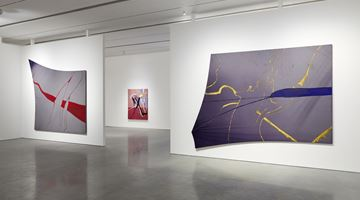 Contemporary art exhibition, Julian Schnabel, The Patch of Blue the Prisoner Calls the Sky at Pace Gallery, New York