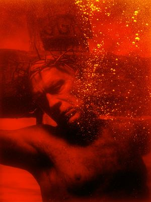 Andres Serrano/ Piss Christ (1987) by Sandro Miller contemporary artwork
