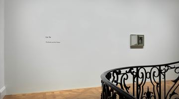 Contemporary art exhibition, Liu Ye, The Book and the Flower at David Zwirner, 69th Street, New York