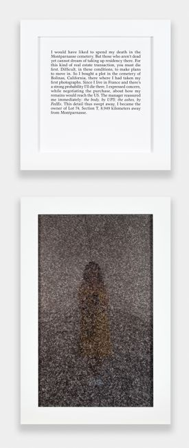 Autobiographies (Concession) by Sophie Calle contemporary artwork